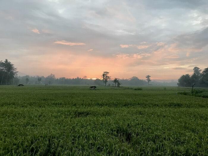 Sunrise Jogyakarta Indonesia