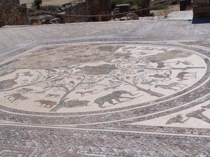 Volubis Mosaic African Animals