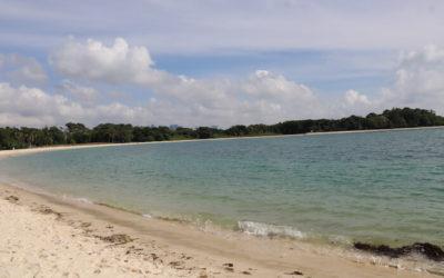 Cheap & Easy Short Trips from Singapore: St John's, Kusu & Lazarus Islands