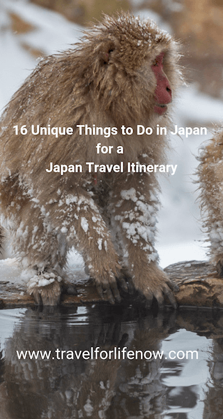 Find out the best things to do in Japan. 16 Unique Things to Do in Japan for a Japan Travel Itinerary by travel bloggers from around the world. #travelforlifenow #visitJapan #uniqueThingsToDoJapan