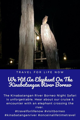 The Kinabatangan River Borneo Night Safari is unforgettable. Hear about our cruise & encounter with an elephant crossing the river. #travelforlifenow #visitborneo #kinabatanganriver #onceinalifetimetravel